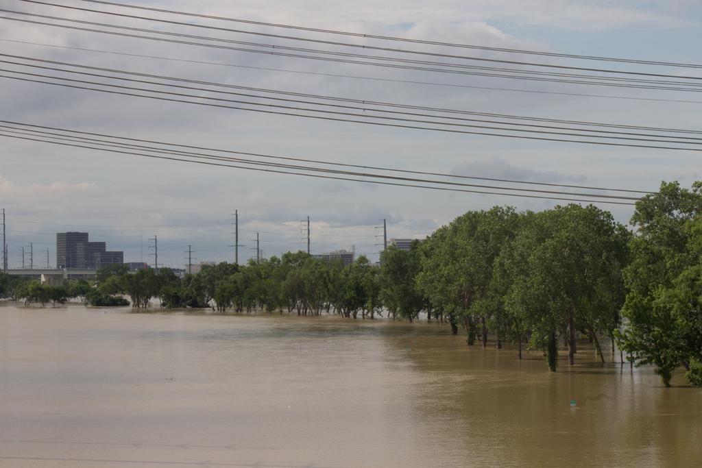Flood 49