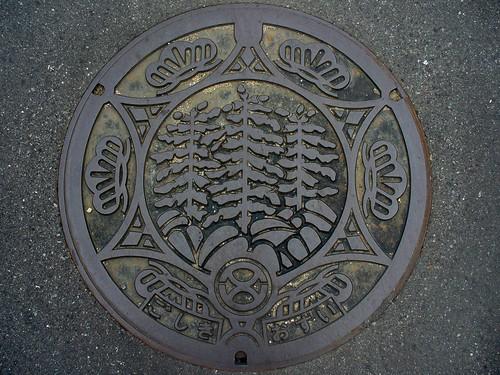Goshiki Hyogo, manhole cover (兵庫県五色町のマンホール)