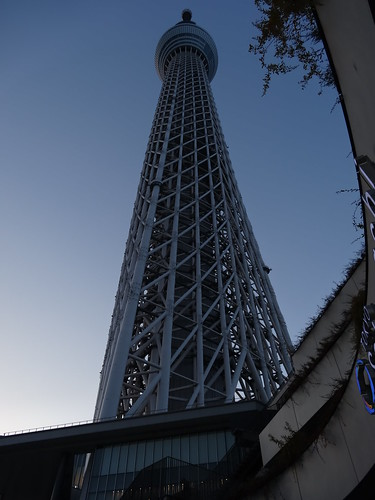 how to get a partner skytree