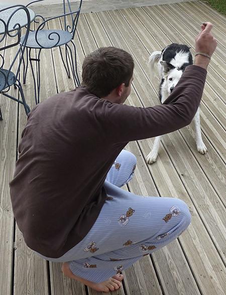 jeux de bêtes
