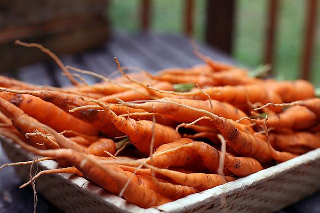carrots-7