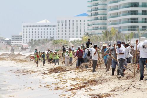 Gobierno de la República entrega recursos para remover sargazo en playas mexicanas