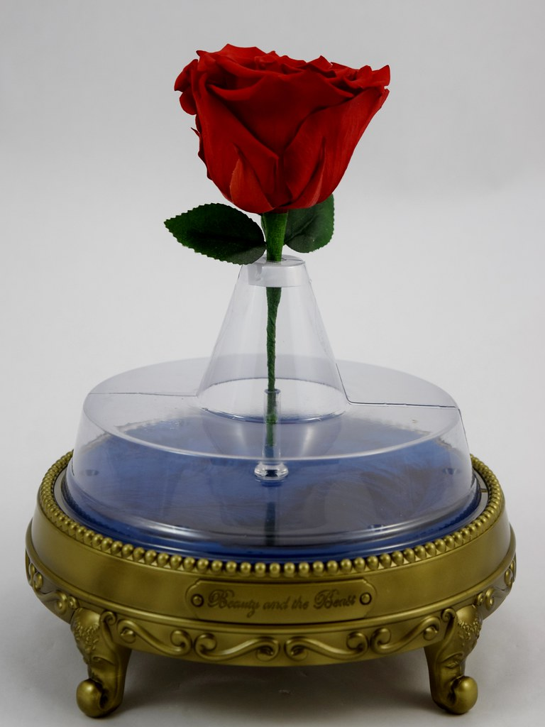Enchanted Rose Bluetooth Speaker By Camino Disney Beauty Flickr