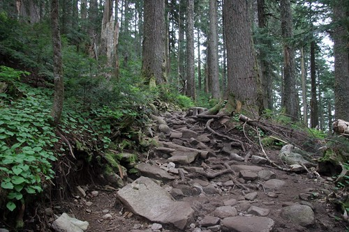 Mt Pilchuck