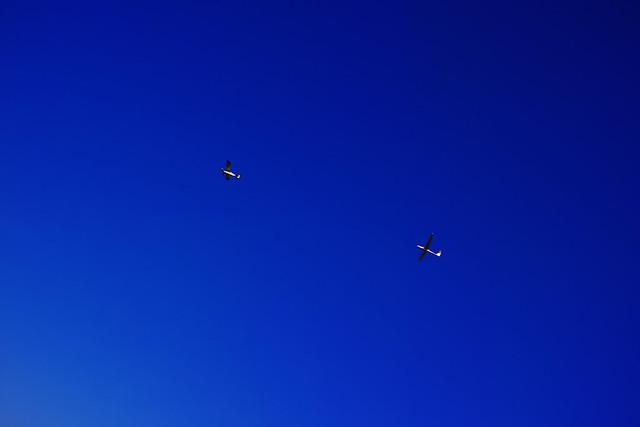 20170131_01_牽引機とグライダー
