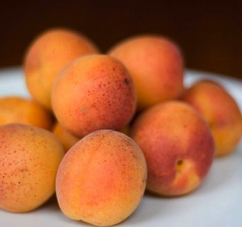 Royal Blenheim Apricots