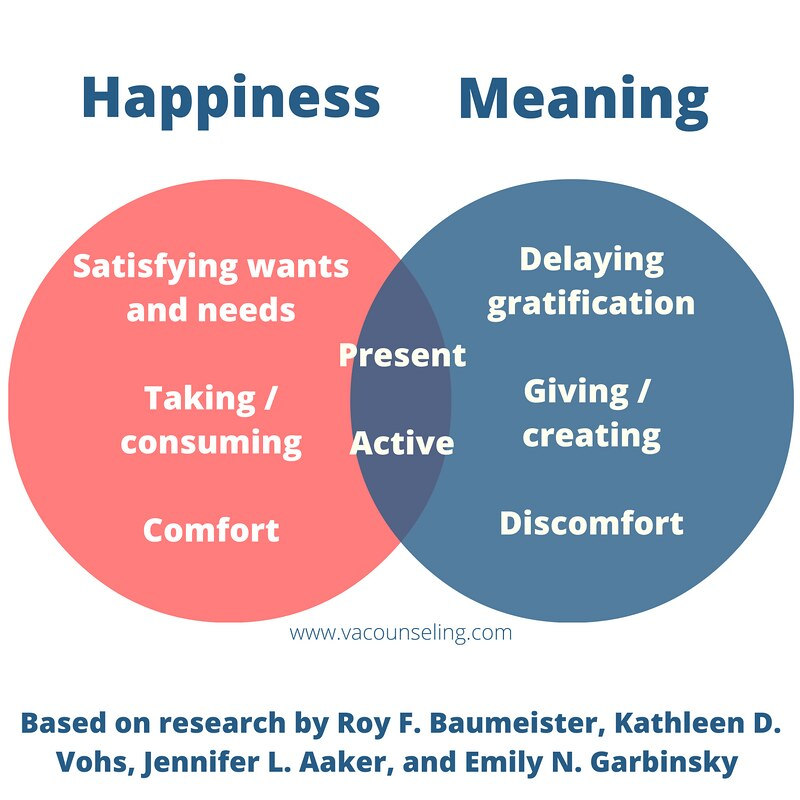 Happiness and meaning