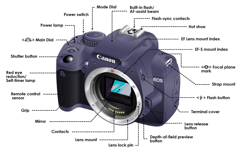 Dslr Camera Functions Diagram This Diagraminfographic Sho Flickr