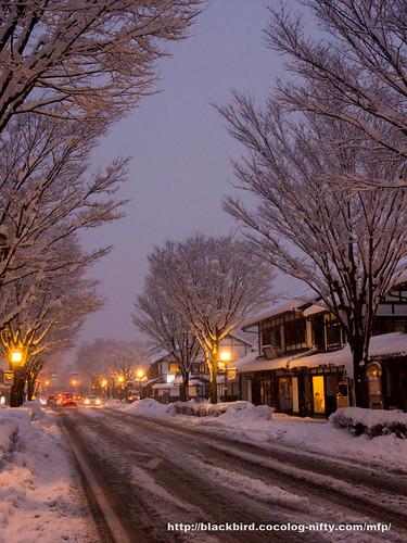 Snow day 1 #12