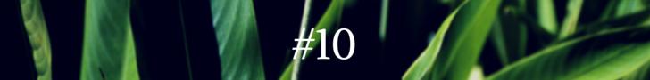 #1(9)
