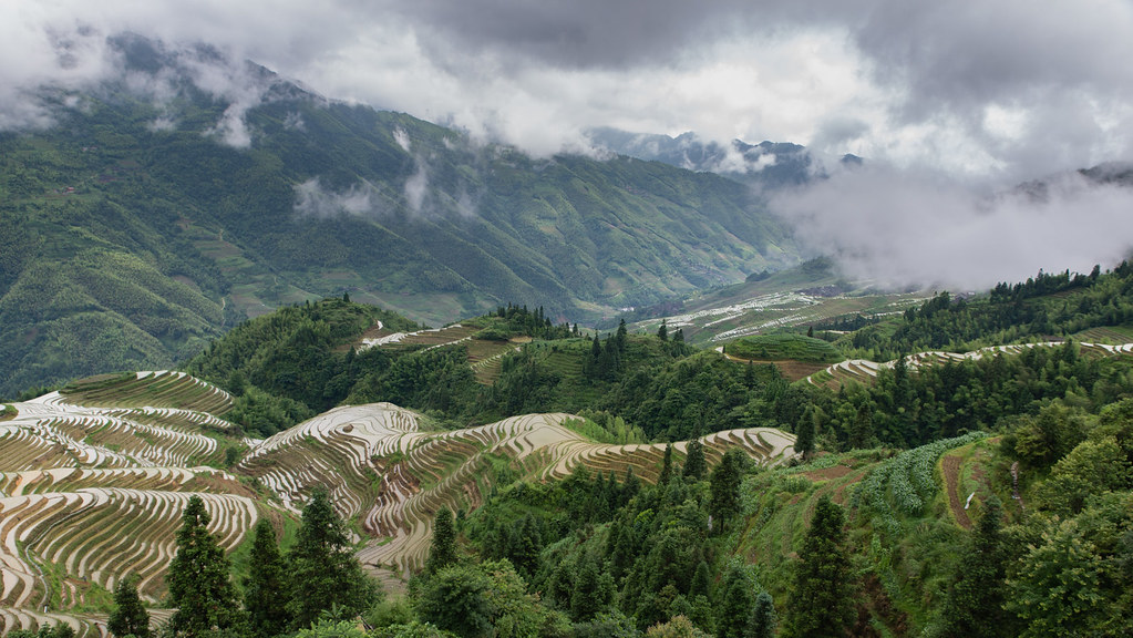 The most amazing rice terrace in china i think dragon for The terraces 2