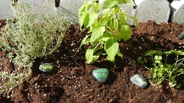 Garden Grow 24