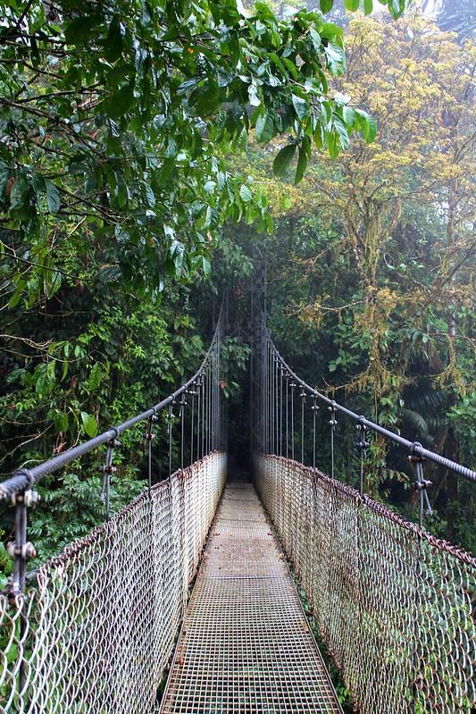 Hängebrücke beim Arenal, Costa Rica