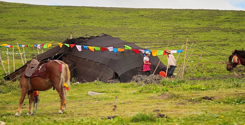 ... The distinguish Nomad black yak-hair tents Tibet 2014 | by reurinkjan & The distinguish Nomad black yak-hair tents Tibet 2014 | Flickr