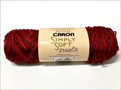 Caron Simply Soft Paints