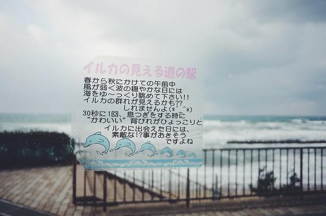 キララ多伎
