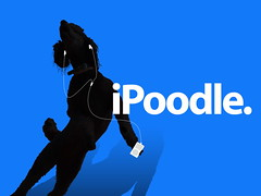 iPoodle! | by jimheid
