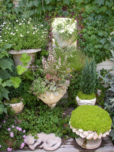 Creative gardening in small urban spaces gold field flickr for Gardening in small spaces