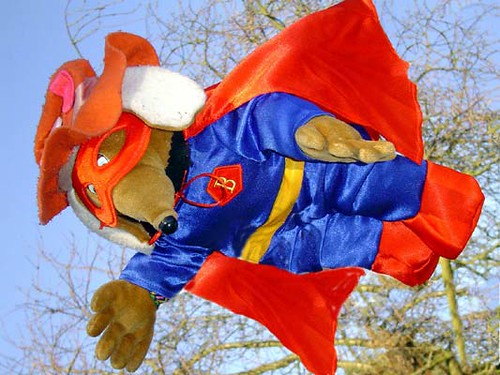 Image result for superwomble