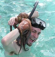 Michael Porter Snorkeling in Moorea with Octopus | by libraryman