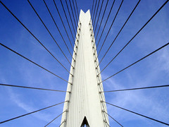 Erasmus bridge | by Dappers