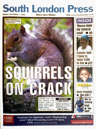 Squirrels on Crack | by Mr Jaded