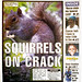 Squirrels on Crack