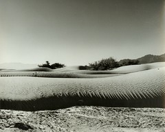 Sand dunes  Death valley. 428-11 ---10-24-81