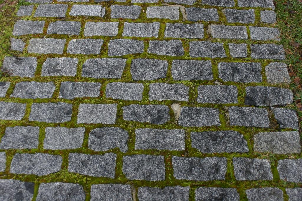 Camino de adoquines granito gris y brillante musgo - Adoquines de granito ...