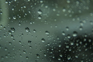 rain beads on my window pane (it's not a song) | by petezpan