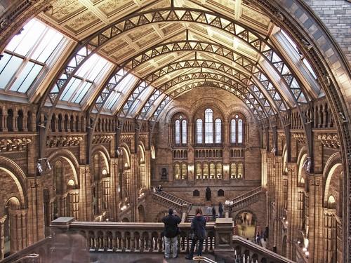 Durham Natural History Museum