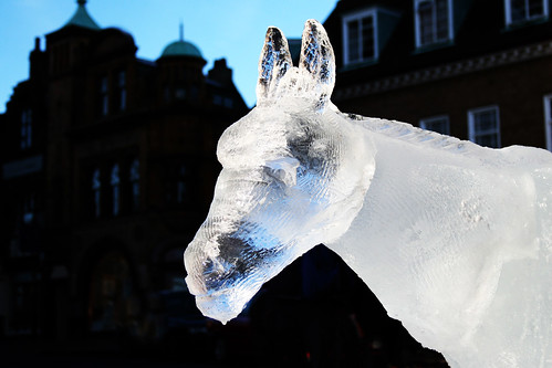 ice sculpture - donkey | by Leo Reynolds