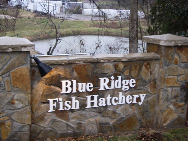 Blue Ridge Fish Hatchery Lee Lefever Flickr