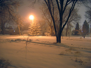 A quiet night's snowfall | by Unhindered by Talent