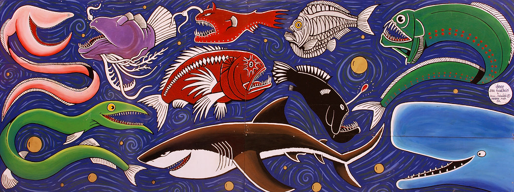 Deep Sea Food Chain Bruce Mahalski This Fantastic