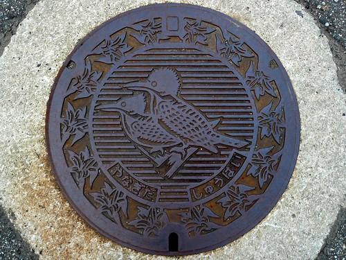 Yanagida Ishikawa, manhole cover (石川県柳田村のマンホール)