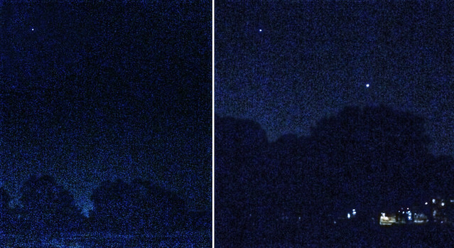 Three Bright Planets Over Wingra Park