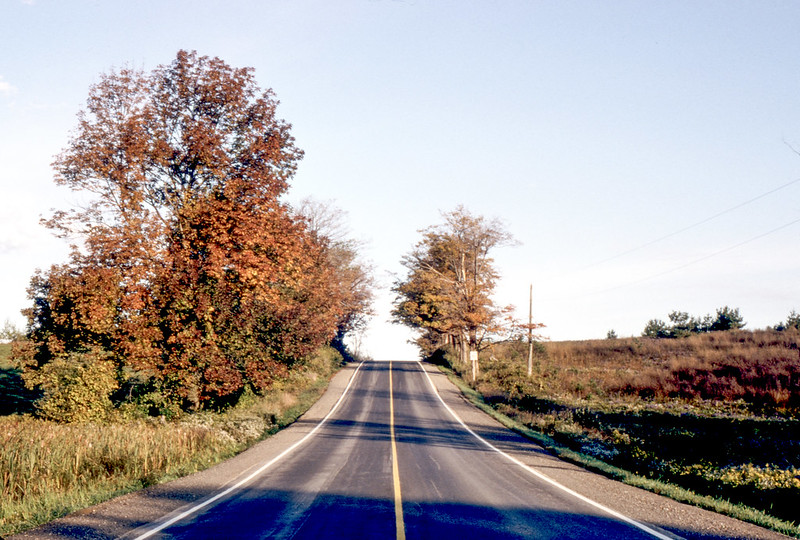 Mississauga Road in the Fall_