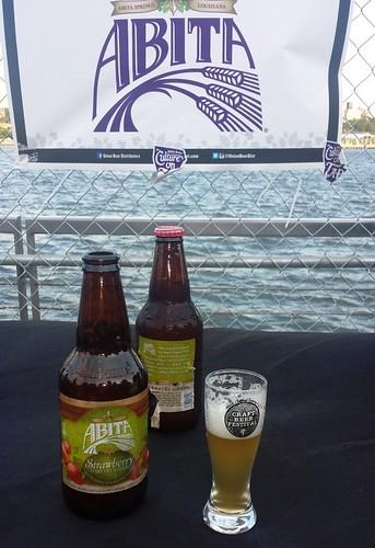 Summer Craft Beer Festival (4)