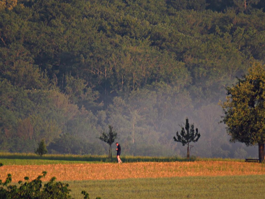 Wanderer mit fernglas hat mich entdeckt etwa 1 km weg. flickr