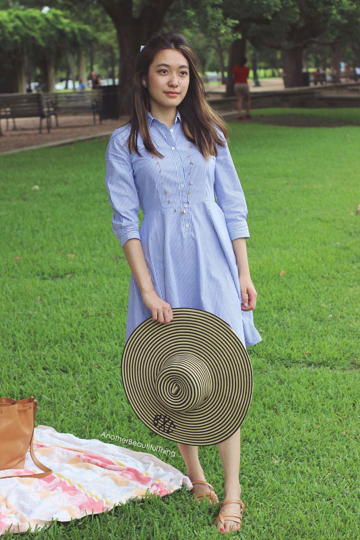 Ann Taylor Striped Full Skirt Shirtdress