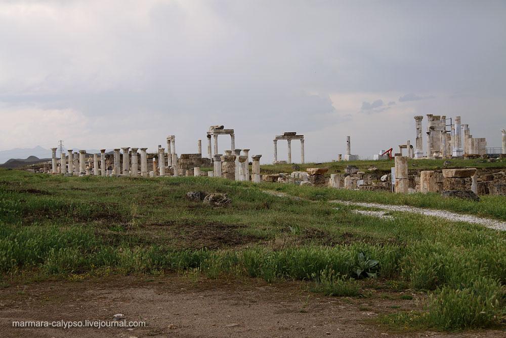 Лаодикия