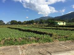 68 - Near Jarabacoa
