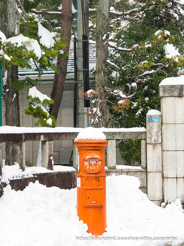 Snow day #05