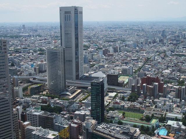 View   from Tokyo Metro Government Building