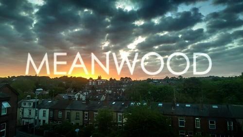 MEANWOOD
