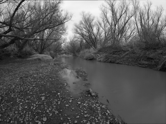 San Pedro River - Cochise County, Arizona
