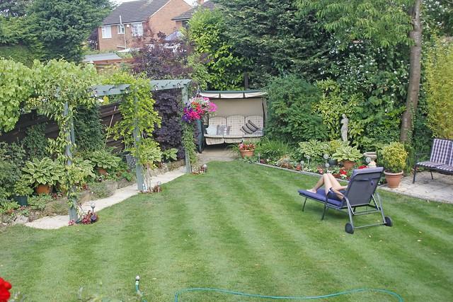 stripy lawn