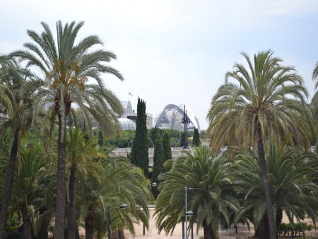 Jardines de Turia  oas