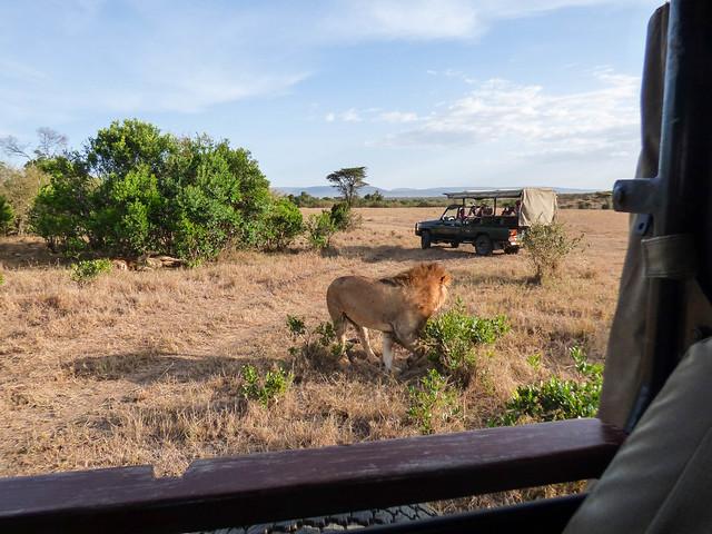 Jordan and Marisa safari 1047.jpg